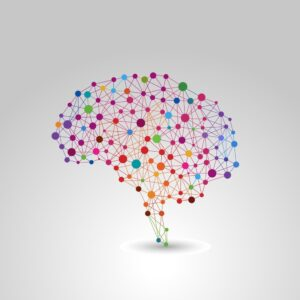 human brain user experience