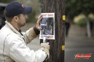 budweiser-lost-dog-notice