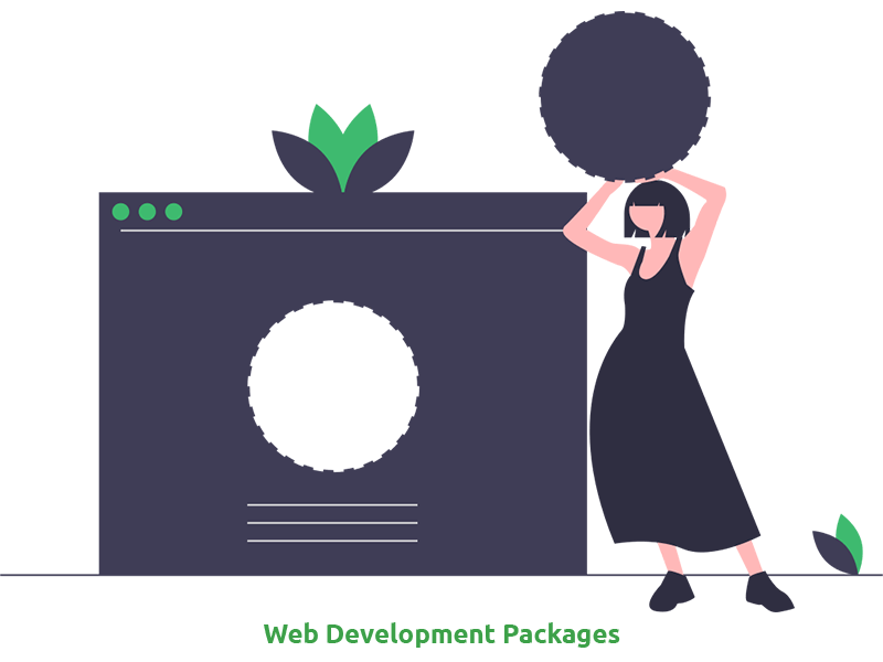Our Web Development Packages